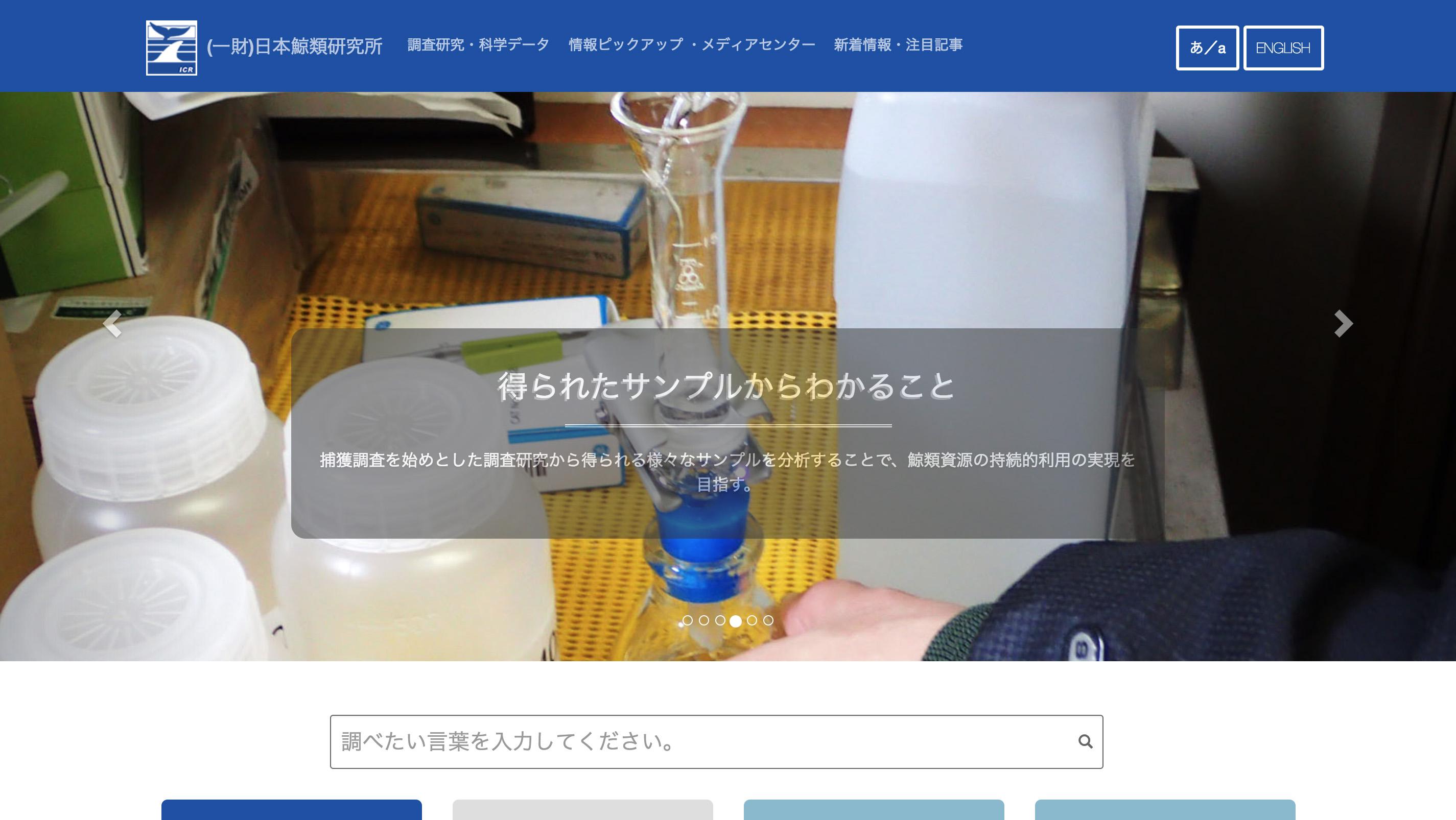 icrwebsite_screenshot